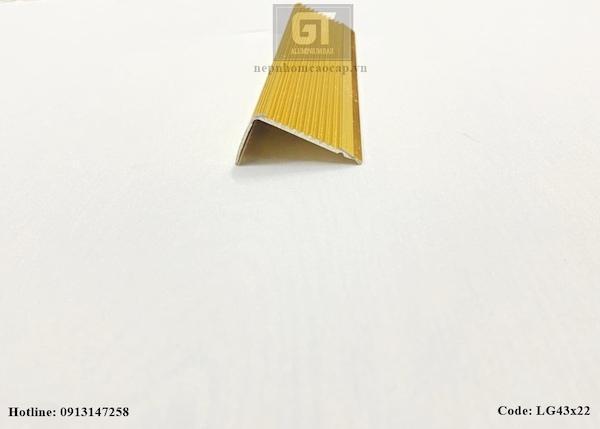 Nẹp chống trơn trượt LG 43 x 22